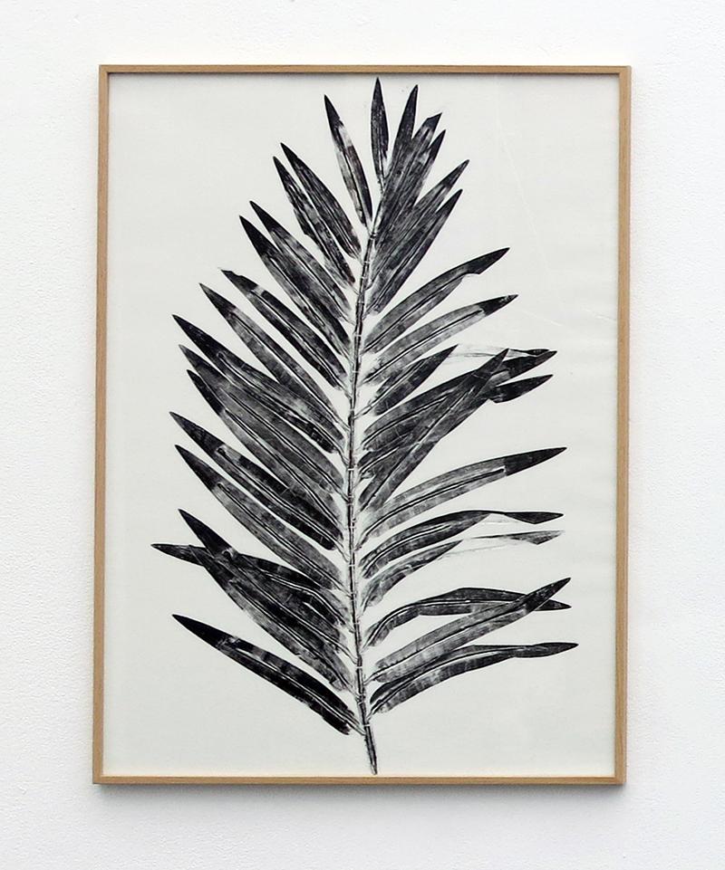 Faux prétendants, monotypes, feuille de palmier, vincent carlier, exposition antipode, galerie HO, Marseille